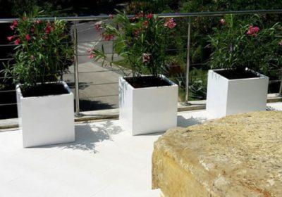 Как посадить цветы в больших садовых плантациях